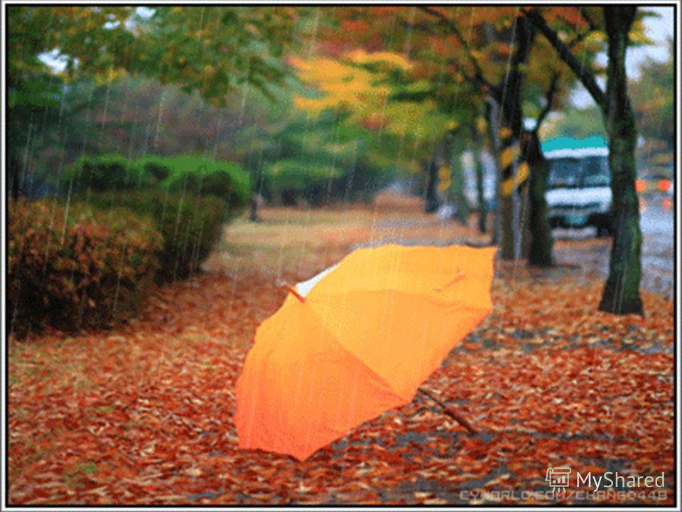 Если дождик начинается, Как цветок, он распускается И со мною в переулке Заспешит домой с прогулки.