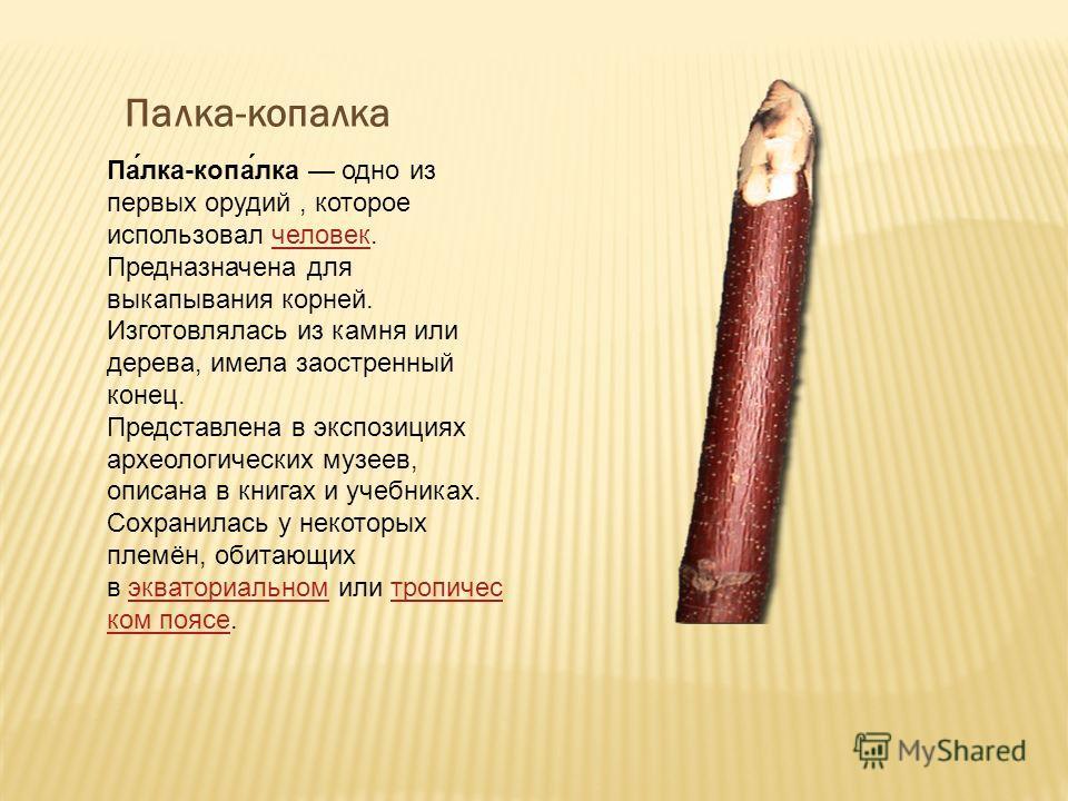 Па́лка-копа́лка одно из первых орудий, которое использовал человек. Предназначена для выкапывания корней. Изготовлялась из камня или дерева, имела заостренный конец.человек Представлена в экспозициях археологических музеев, описана в книгах и учебник