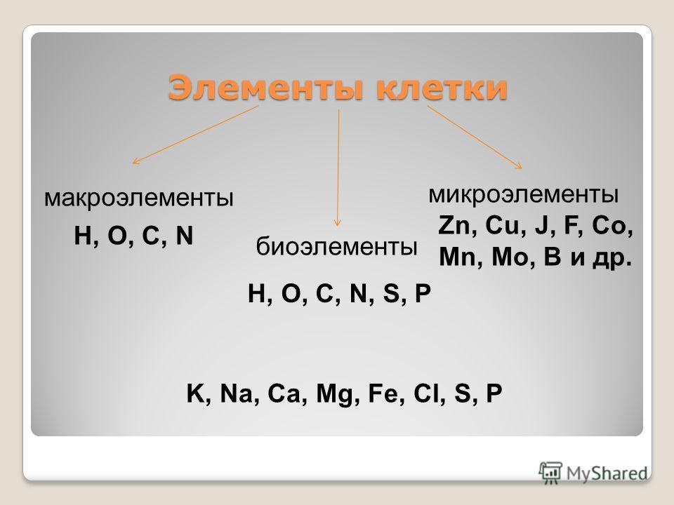 Элементы клетки микроэлементы биоэлементы макроэлементы H, O, C, N H, O, C, N, S, P Zn, Cu, J, F, Co, Mn, Mo, B и др. K, Na, Ca, Mg, Fe, Cl, S, P