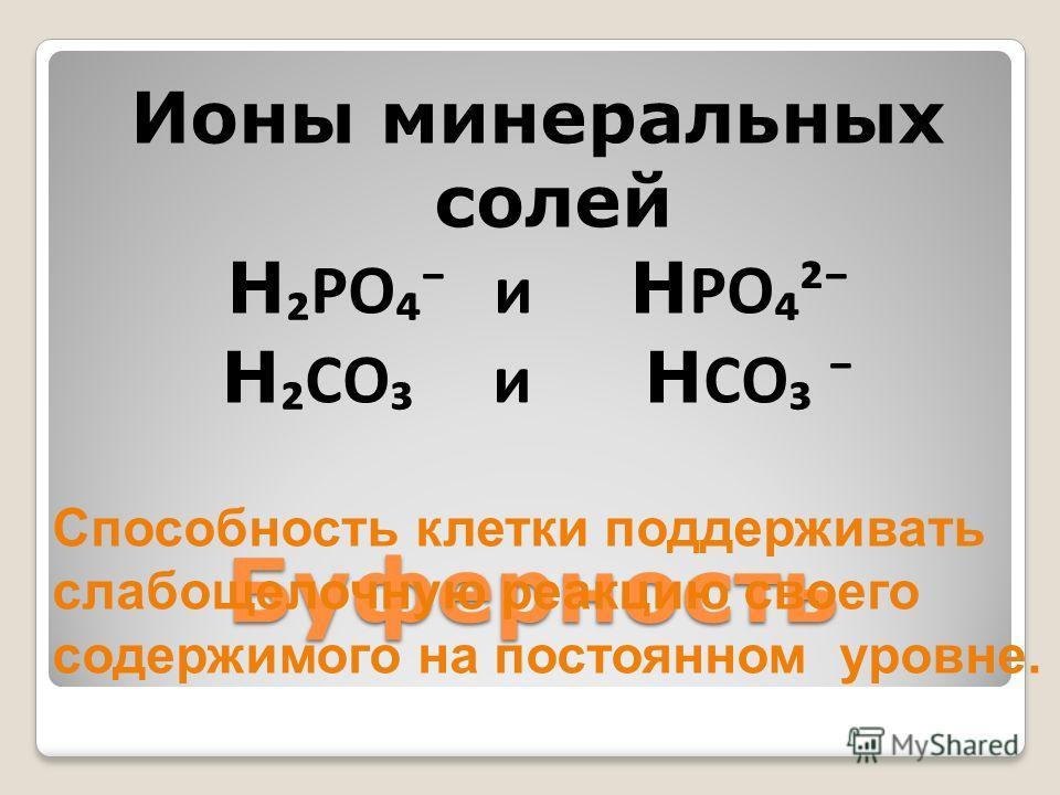 Буферность Ионы минеральных солей H PO и H PO² H CO и H CO Способность клетки поддерживать слабощелочную реакцию своего содержимого на постоянном уровне.