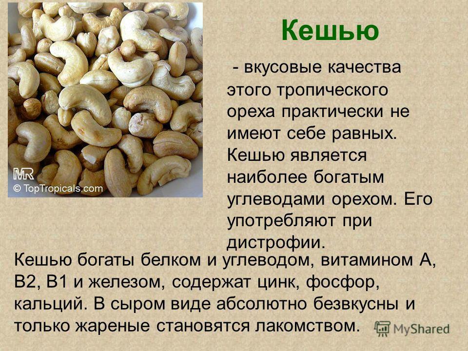 Кешью - вкусовые качества этого тропического ореха практически не имеют себе равных. Кешью является наиболее богатым углеводами орехом. Его употребляют при дистрофии. Кешью богаты белком и углеводом, витамином А, В2, В1 и железом, содержат цинк, фосф