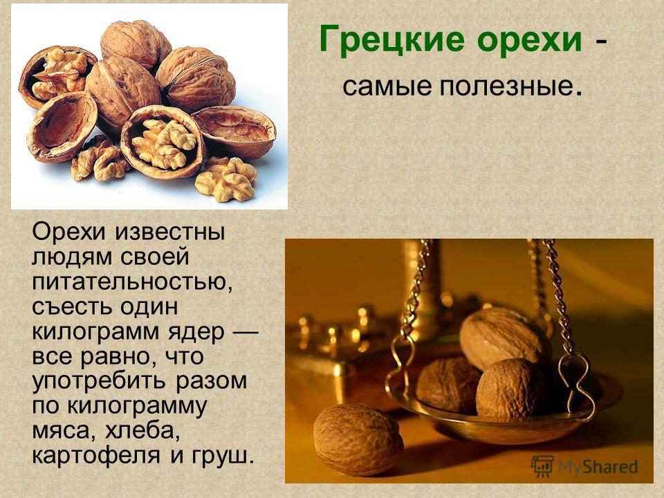 Грецкие орехи - самые полезные. Орехи известны людям своей питательностью, съесть один килограмм ядер все равно, что употребить разом по килограмму мяса, хлеба, картофеля и груш.