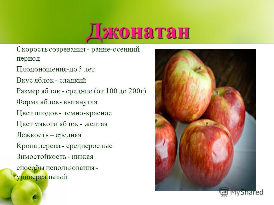 Джонатан Скорость созревания - ранне-осенний период Плодоношения-до 5 лет Вкус яблок - сладкий Размер яблок - средние (от 100 до 200г) Форма яблок- вытянутая Цвет плодов - темно-красное Цвет мякоти яблок - желтая Лежкость – средняя Крона дерева - сре