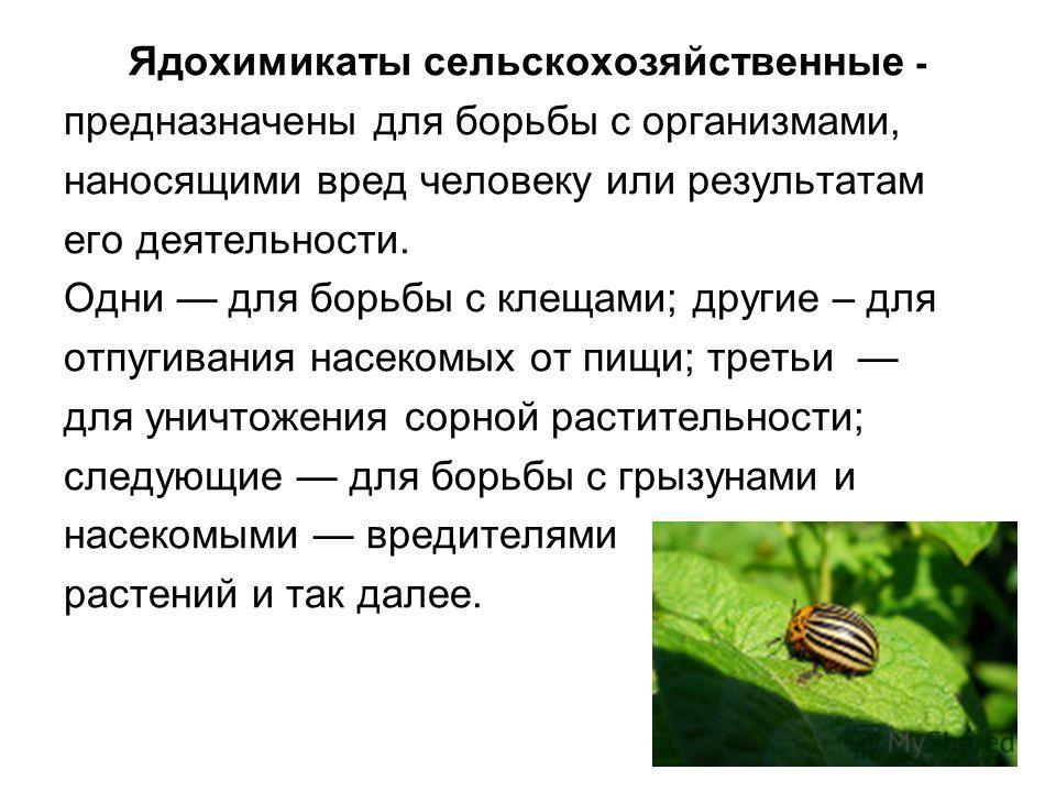 Ядохимикаты сельскохозяйственные - предназначены для борьбы с организмами, наносящими вред человеку или результатам его деятельности. Одни для борьбы с клещами; другие – для отпугивания насекомых от пищи; третьи для уничтожения сорной растительности;