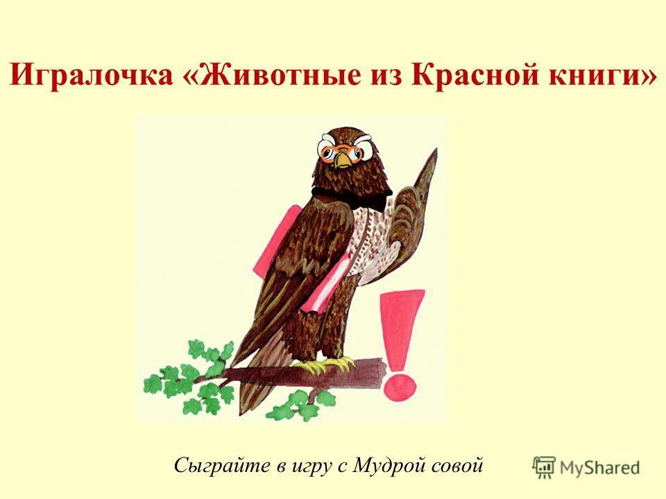 Игралочка «Животные из Красной книги» Сыграйте в игру с Мудрой совой
