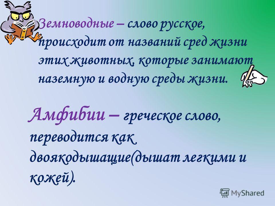 Земноводные – слово русское, происходит от названий сред жизни этих животных, которые занимают наземную и водную среды жизни. Амфибии – греческое слово, переводится как двоякодышащие(дышат легкими и кожей).