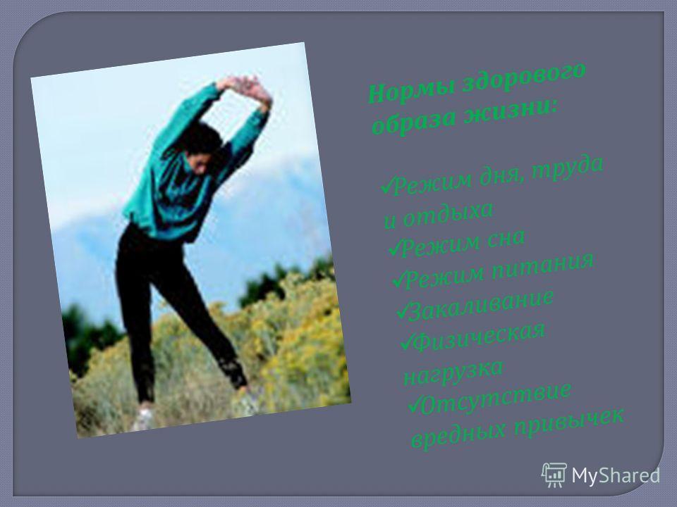 Нормы здорового образа жизни: Режим дня, труда и отдыха Режим сна Режим питания Закаливание Физическая нагрузка Отсутствие вредных привычек