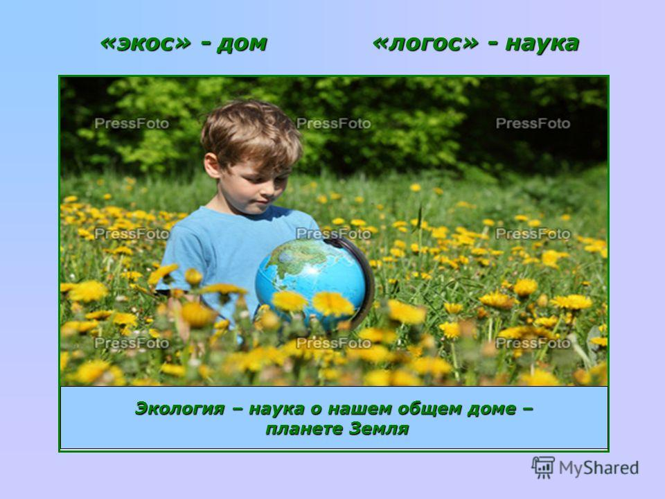 «экос» - дом «логос» - наука Экология – наука о нашем общем доме – планете Земля планете Земля