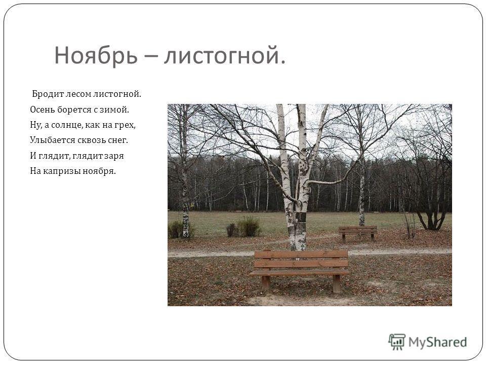 Ноябрь – листогной. Бродит лесом листогной. Осень борется с зимой. Ну, а солнце, как на грех, Улыбается сквозь снег. И глядит, глядит заря На капризы ноября.