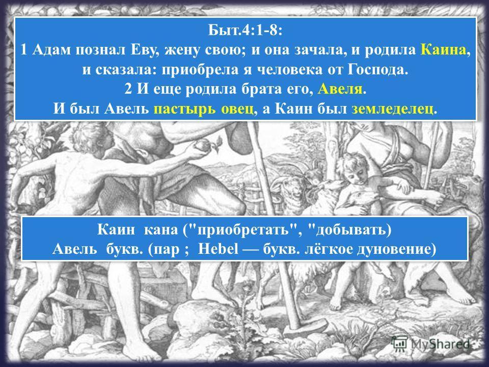 Быт.4:1-8: 1 Адам познал Еву, жену свою; и она зачала, и родила Каина, и сказала: приобрела я человека от Господа. 2 И еще родила брата его, Авеля. И был Авель пастырь овец, а Каин был земледелец. Каин кана (