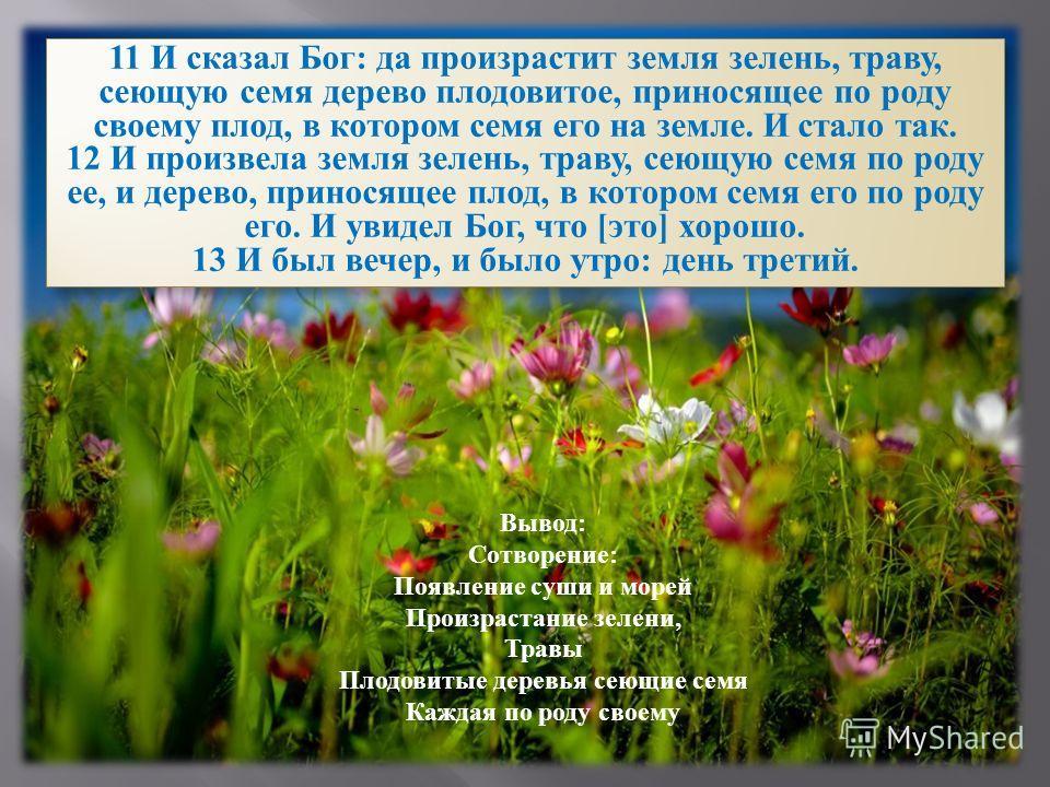 11 И сказал Бог: да произрастит земля зелень, траву, сеющую семя дерево плодовитое, приносящее по роду своему плод, в котором семя его на земле. И стало так. 12 И произвела земля зелень, траву, сеющую семя по роду ее, и дерево, приносящее плод, в кот