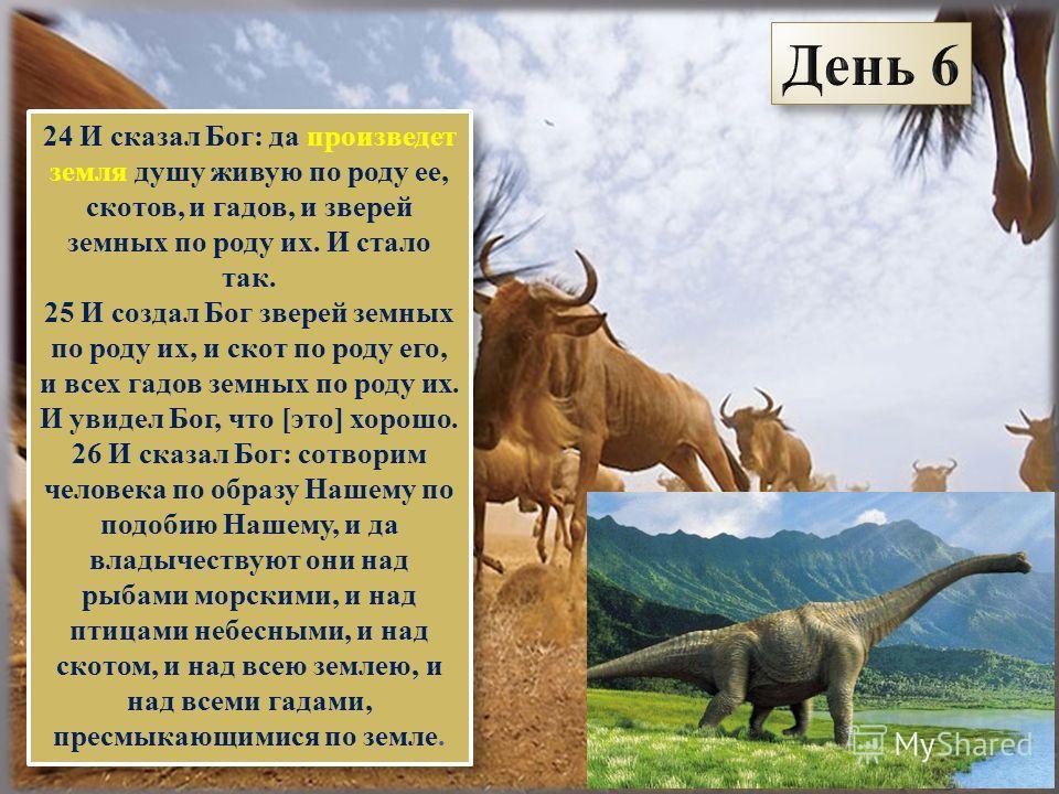 24 И сказал Бог: да произведет земля душу живую по роду ее, скотов, и гадов, и зверей земных по роду их. И стало так. 25 И создал Бог зверей земных по роду их, и скот по роду его, и всех гадов земных по роду их. И увидел Бог, что [это] хорошо. 26 И с