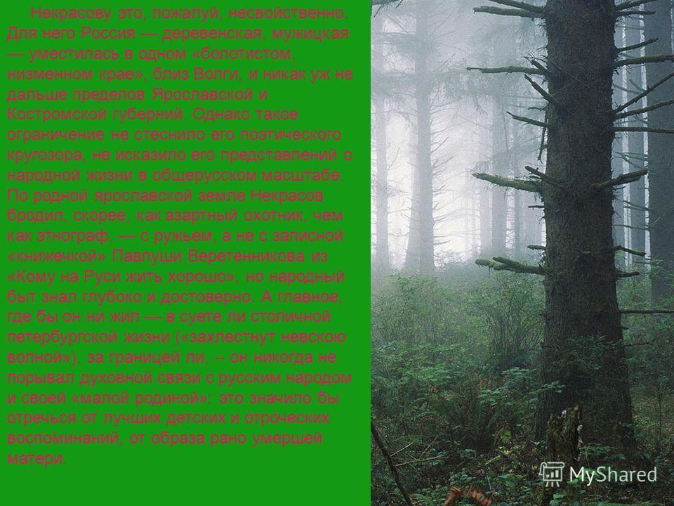 Некрасову это, пожалуй, несвойственно. Для него Россия деревенская, мужицкая уместилась в одном «болотистом, низменном крае», близ Волги, и никак уж не дальше пределов Ярославской и Костромской губерний. Однако такое ограничение не стеснило его поэти