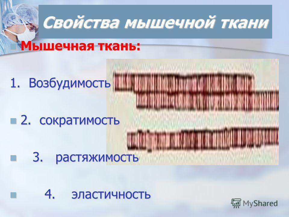 Свойства мышечной ткани Мышечная ткань: Мышечная ткань: 1. Возбудимость 2. сократимость 2. сократимость 3. растяжимость 3. растяжимость 4. эластичность 4. эластичность
