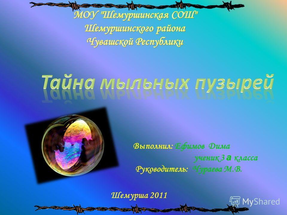 Выполнил: Ефимов Дима ученик 3 а класса Руководитель: Чураева М.В. Шемурша 2011