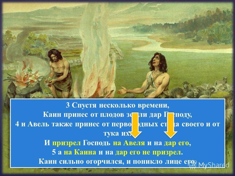 3 Спустя несколько времени, Каин принес от плодов земли дар Господу, 4 и Авель также принес от первородных стада своего и от тука их. И призрел Господь на Авеля и на дар его, 5 а на Каина и на дар его не призрел. Каин сильно огорчился, и поникло лице