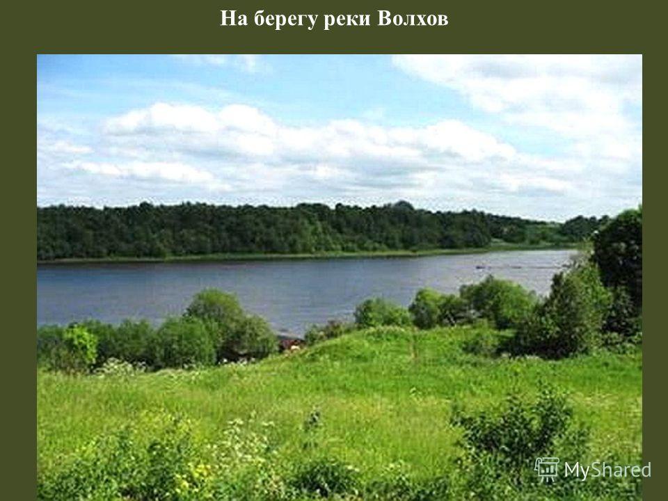 На берегу реки Волхов
