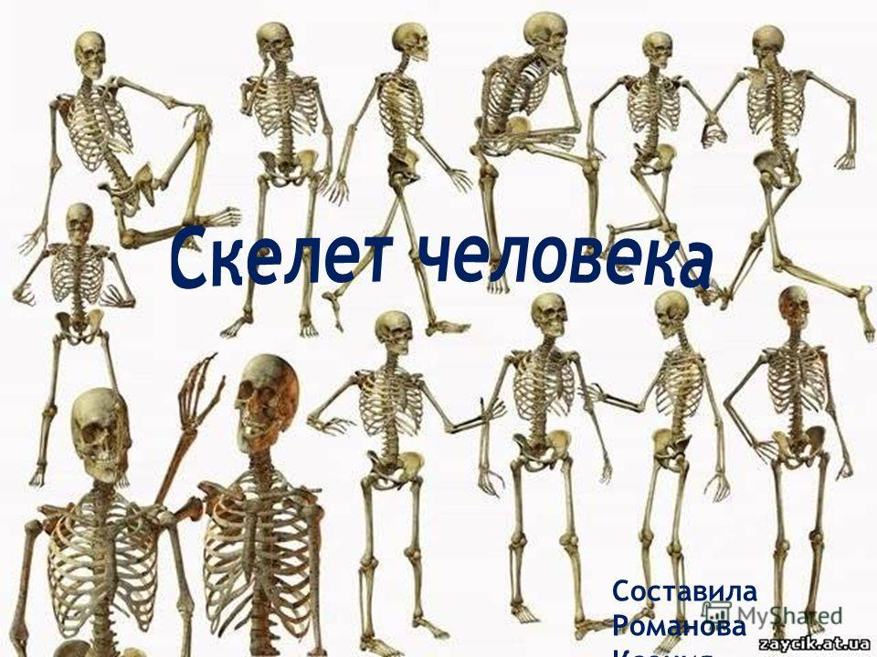 Составила Романова Ксения