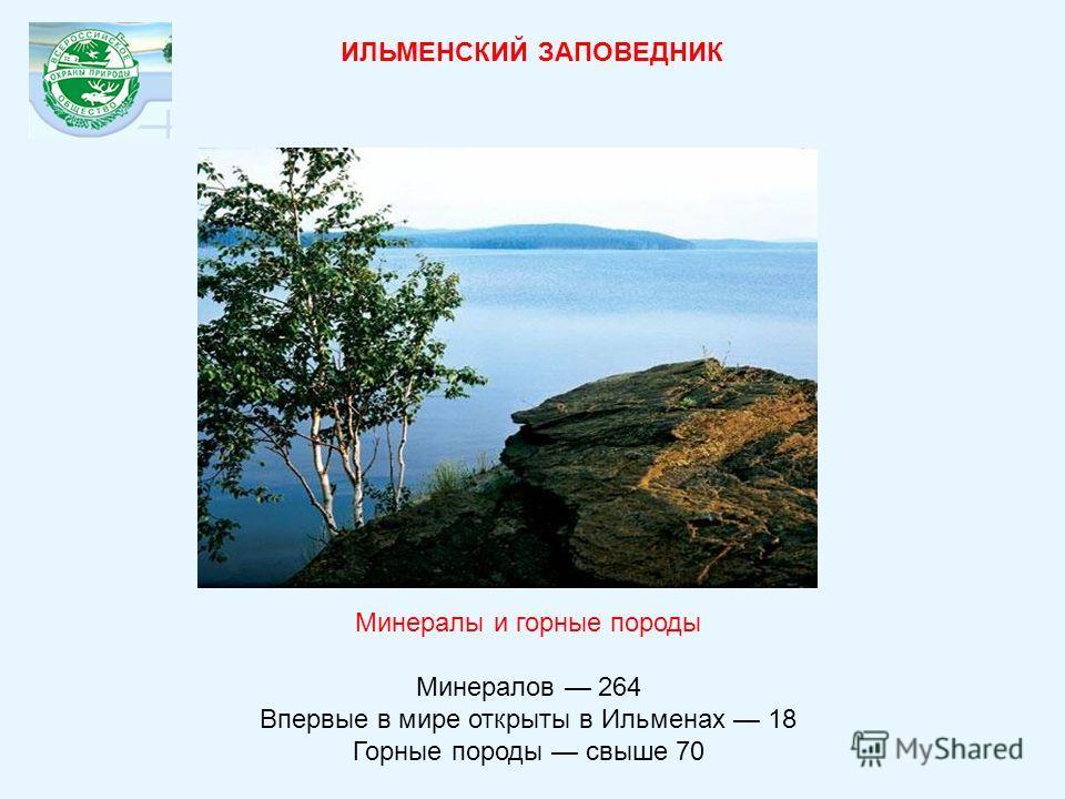 Минералы и горные породы Минералов 264 Впервые в мире открыты в Ильменах 18 Горные породы свыше 70