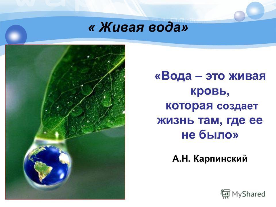 «Вода – это живая кровь, которая создает жизнь там, где ее не было» А.Н. Карпинский « Живая вода»