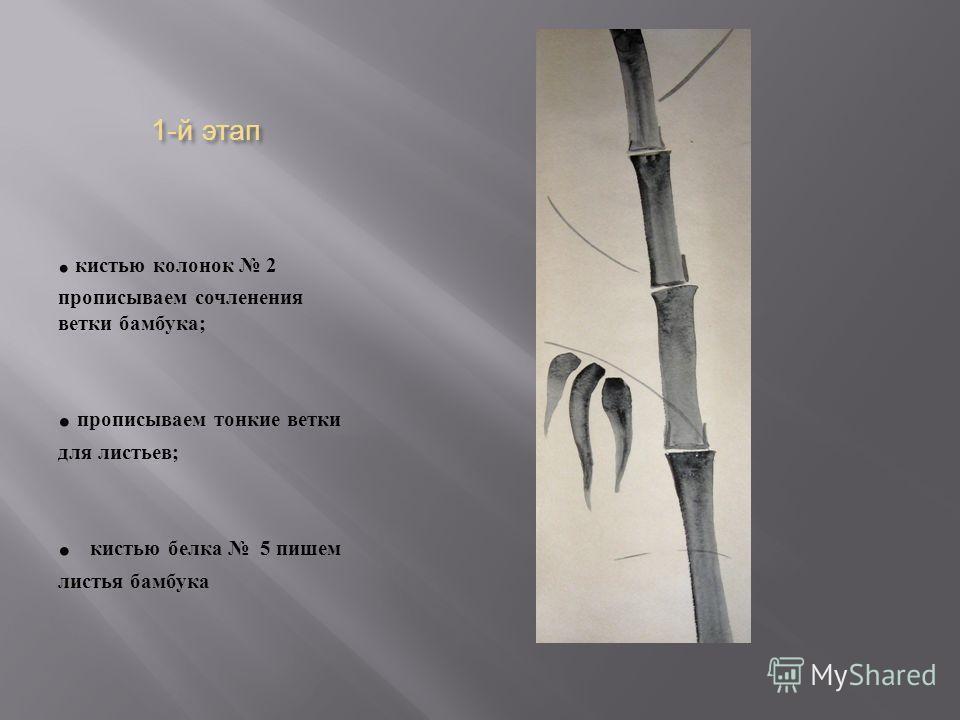 1- й этап. кистью колонок 2 прописываем сочленения ветки бамбука ;. прописываем тонкие ветки для листьев ;. кистью белка 5 пишем листья бамбука