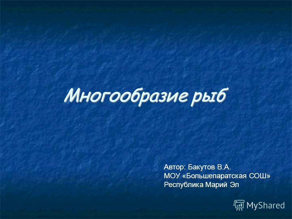 Многообразие рыб Автор: Бакутов В.А. МОУ «Большепаратская СОШ» Республика Марий Эл