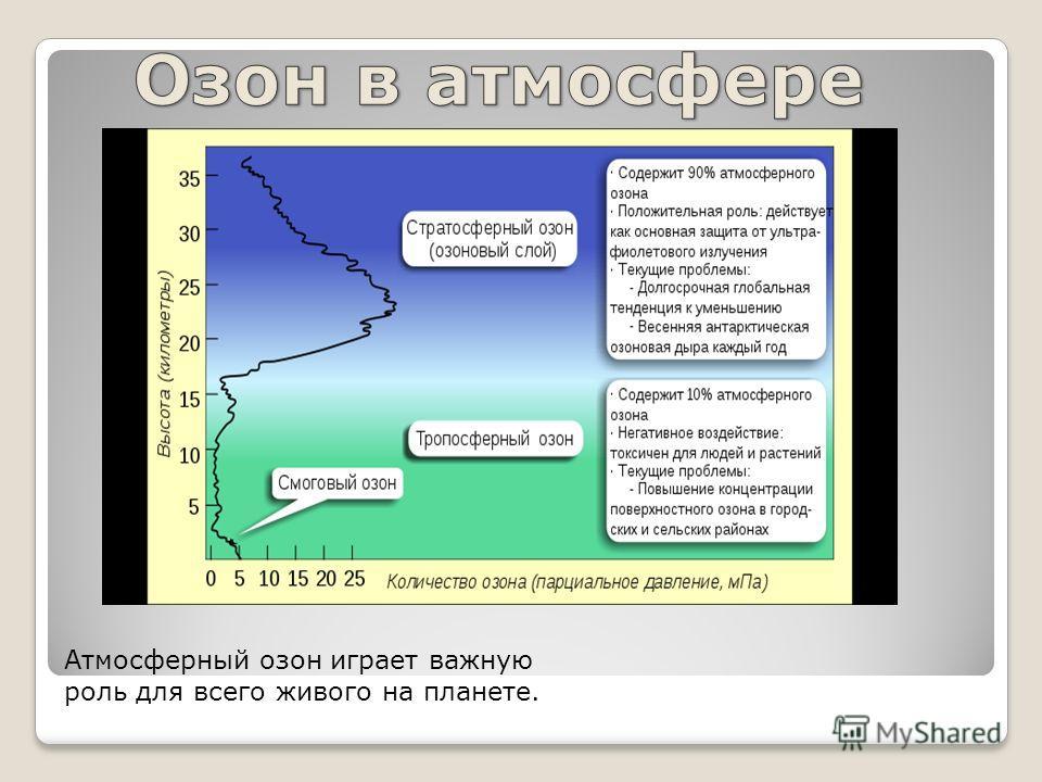 Атмосферный озон играет важную роль для всего живого на планете.