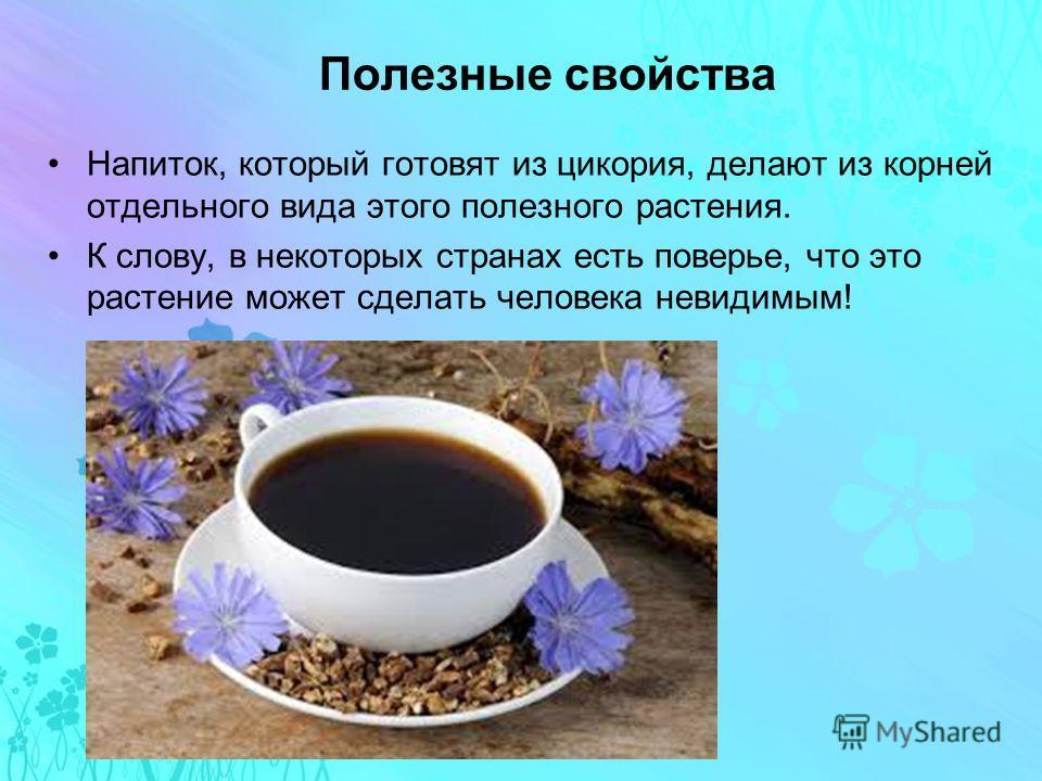 Полезные свойства Напиток, который готовят из цикория, делают из корней отдельного вида этого полезного растения. К слову, в некоторых странах есть поверье, что это растение может сделать человека невидимым!