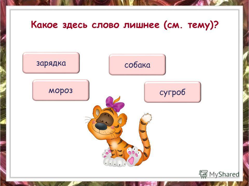 Какое здесь слово лишнее (см. тему)? собака зарядка сугроб мороз