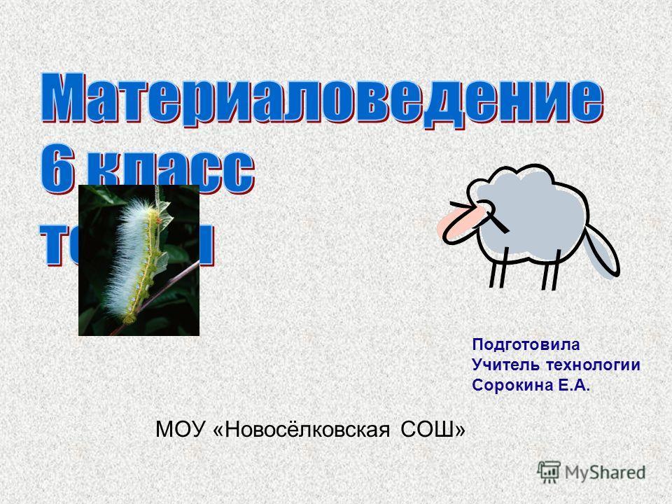 МОУ «Новосёлковская СОШ» Подготовила Учитель технологии Сорокина Е.А.