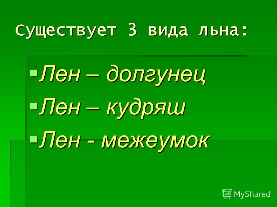 Существует 3 вида льна: Лен – долгунец Лен – долгунец Лен – кудряш Лен – кудряш Лен - межеумок Лен - межеумок
