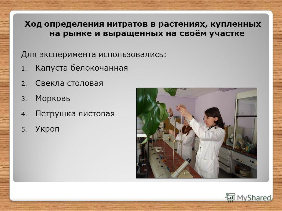 Ход определения нитратов в растениях, купленных на рынке и выращенных на своём участке Для эксперимента использовались: 1. Капуста белокочанная 2. Свекла столовая 3. Морковь 4. Петрушка листовая 5. Укроп