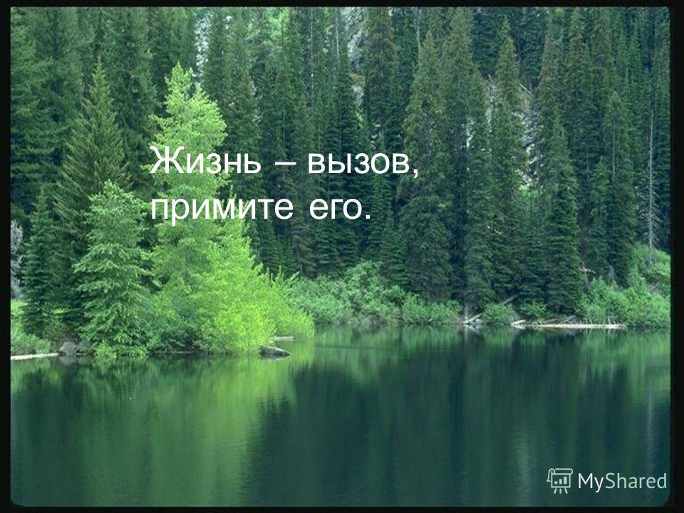 Жизнь – вызов, примите его.