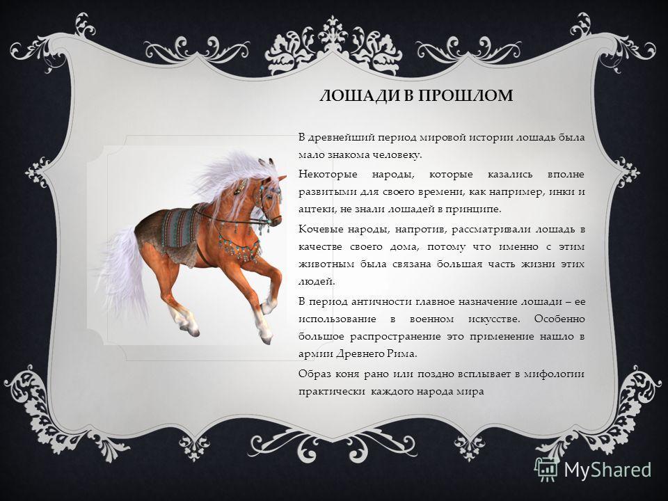 ЛОШАДИ В ПРОШЛОМ В древнейший период мировой истории лошадь была мало знакома человеку. Некоторые народы, которые казались вполне развитыми для своего времени, как например, инки и ацтеки, не знали лошадей в принципе. Кочевые народы, напротив, рассма