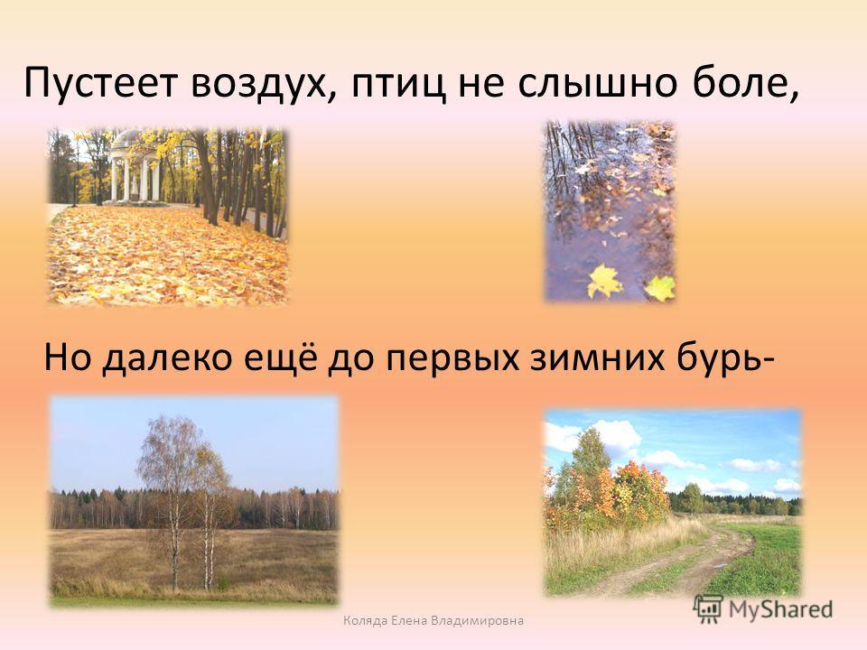Пустеет воздух, птиц не слышно боле, Но далеко ещё до первых зимних бурь- Коляда Елена Владимировна