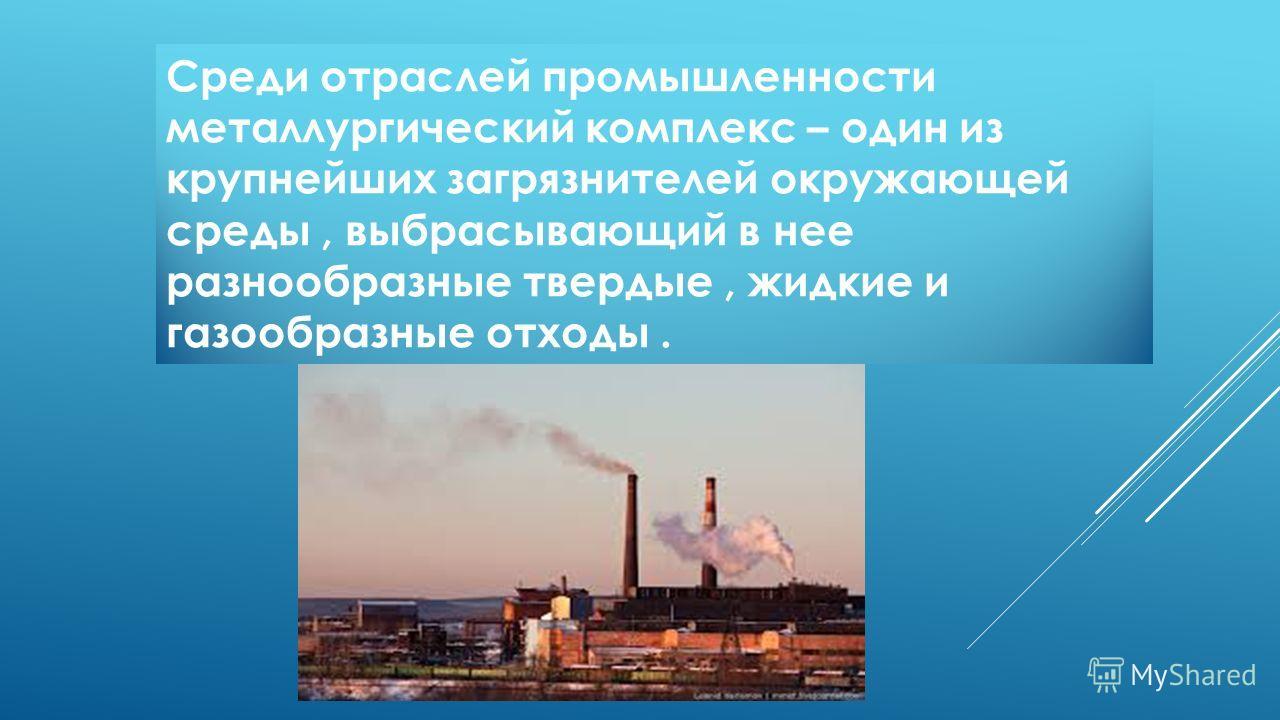 Среди отраслей промышленности металлургический комплекс – один из крупнейших загрязнителей окружающей среды, выбрасывающий в нее разнообразные твердые, жидкие и газообразные отходы.