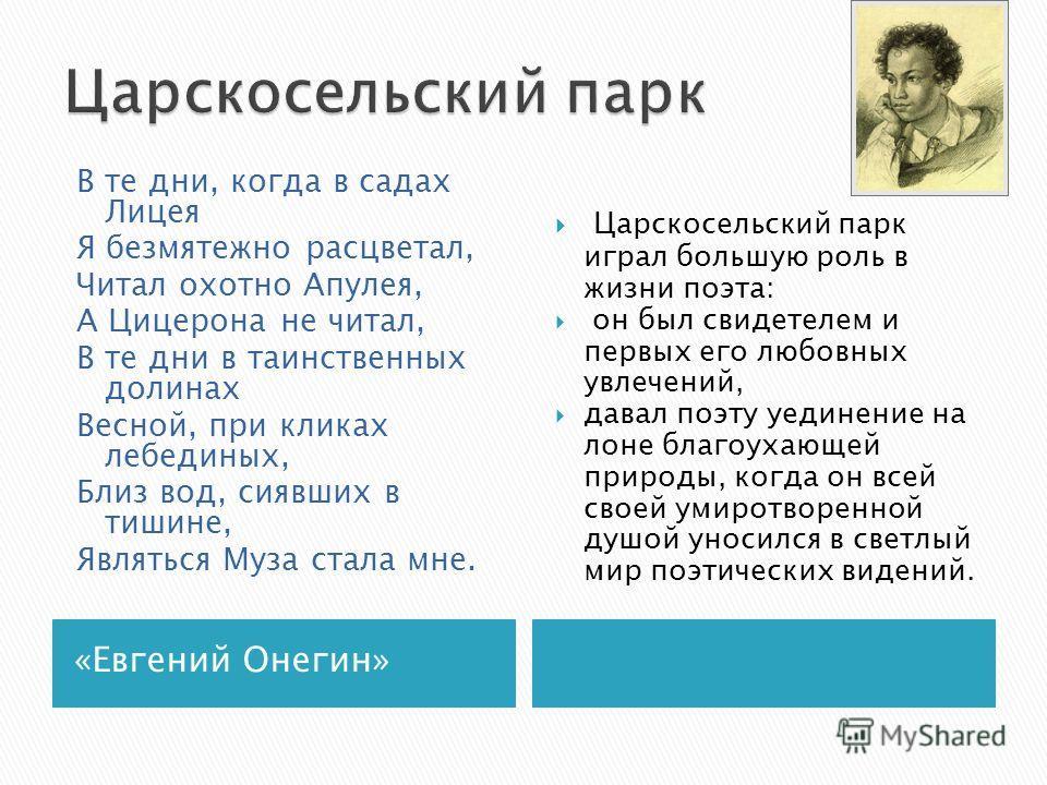 «Евгений Онегин» Царскосельский парк играл большую роль в жизни поэта: он был свидетелем и первых его любовных увлечений, давал поэту уединение на лоне благоухающей природы, когда он всей своей умиротворенной душой уносился в светлый мир поэтических