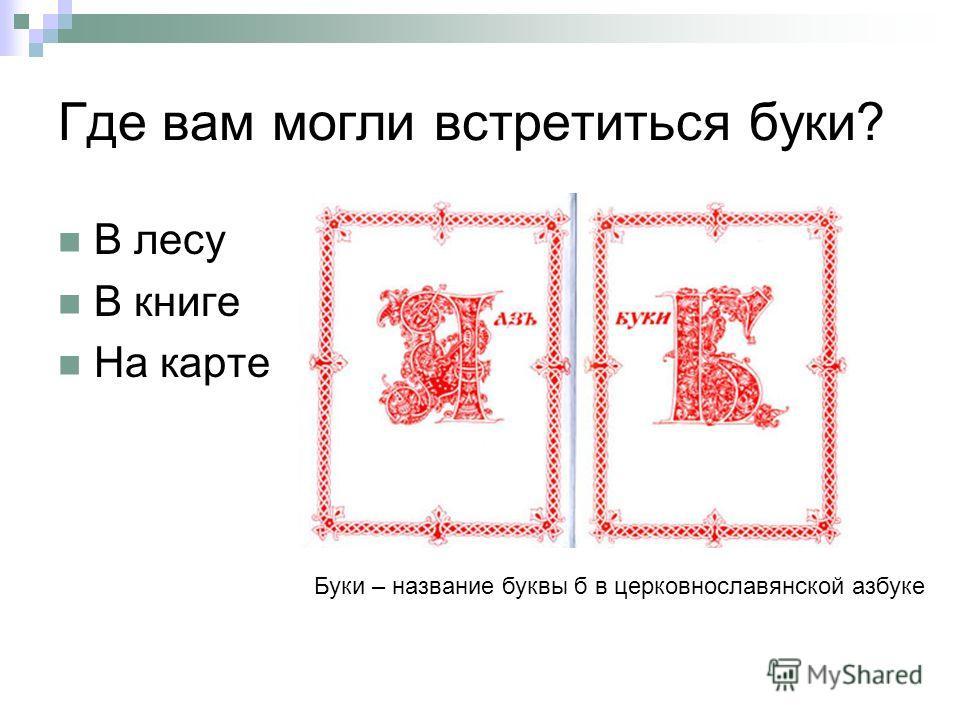 Где вам могли встретиться буки? В лесу В книге На карте Буки – название буквы б в церковнославянской азбуке