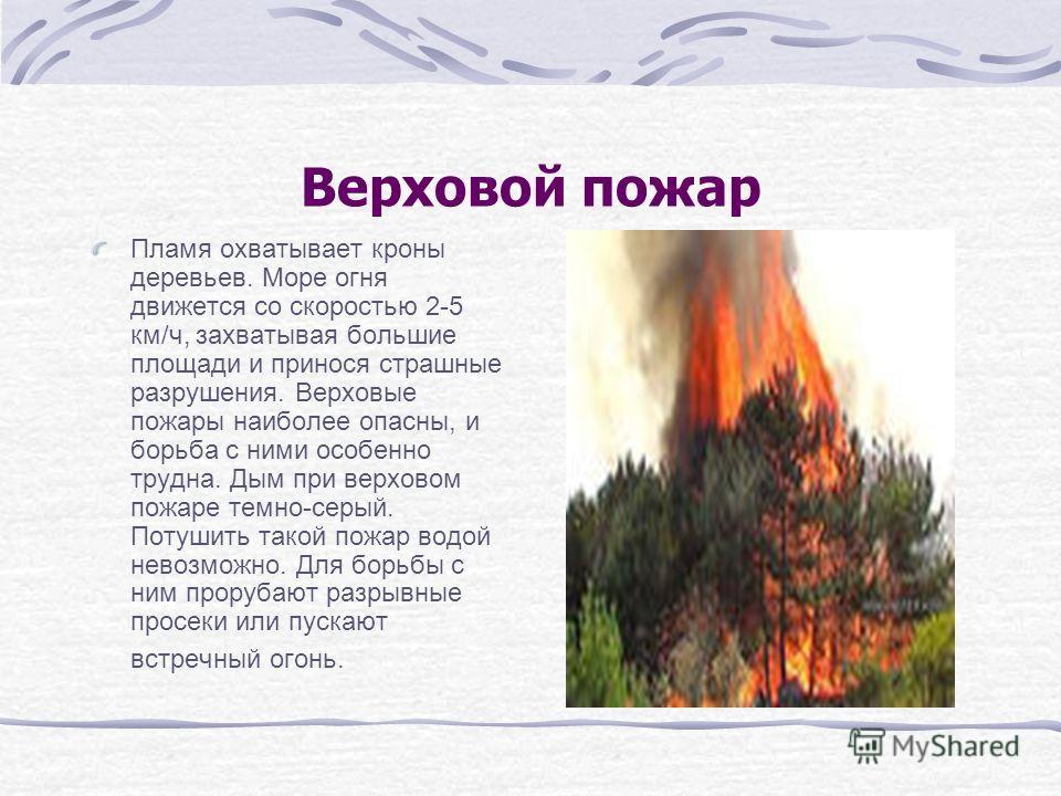 Верховой пожар Пламя охватывает кроны деревьев. Море огня движется со скоростью 2-5 км/ч, захватывая большие площади и принося страшные разрушения. Верховые пожары наиболее опасны, и борьба с ними особенно трудна. Дым при верховом пожаре темно-серый.