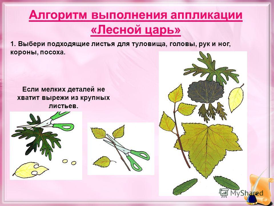 Алгоритм выполнения аппликации «Лесной царь» 1. Выбери подходящие листья для туловища, головы, рук и ног, короны, посоха. Если мелких деталей не хватит вырежи из крупных листьев.