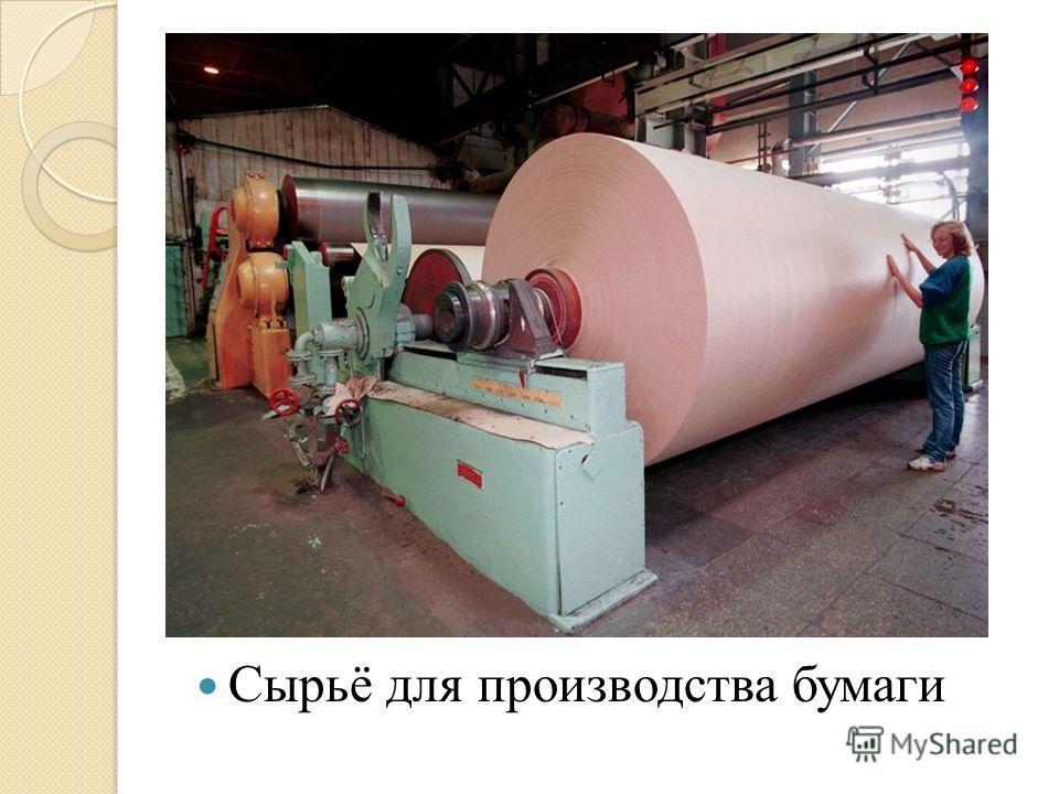 Сырьё для производства бумаги