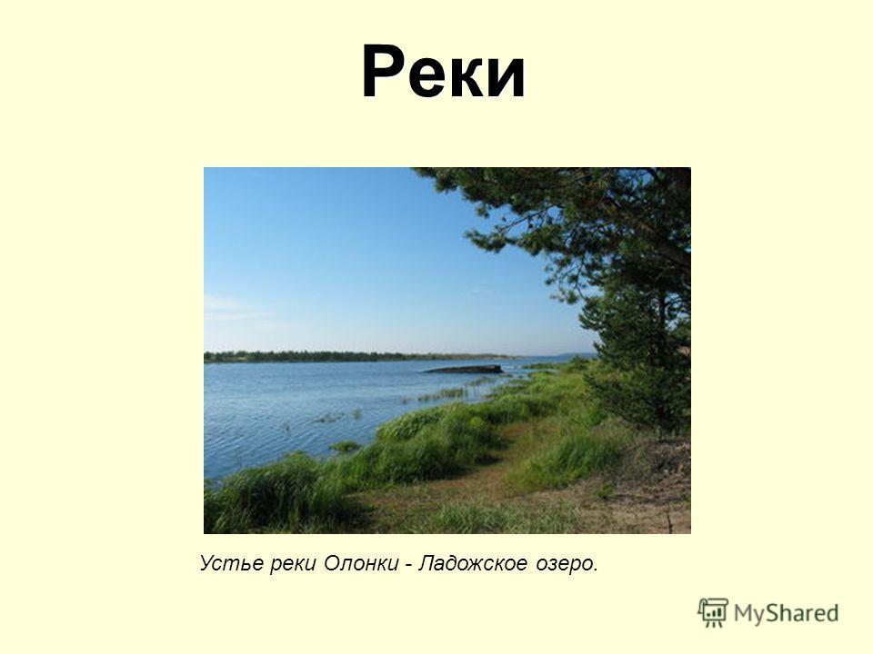 Реки Устье реки Олонки - Ладожское озеро.