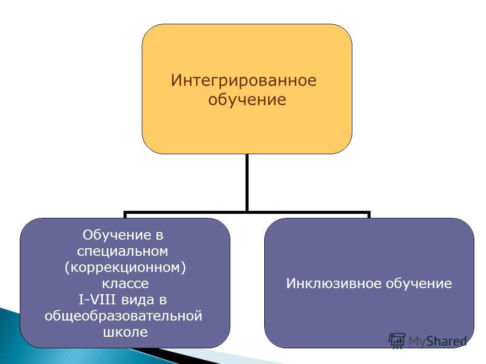 Интегрированное обучение Обучение в специальном (коррекционном) классе I-VIII вида в общеобразовательной школе Инклюзивное обучение