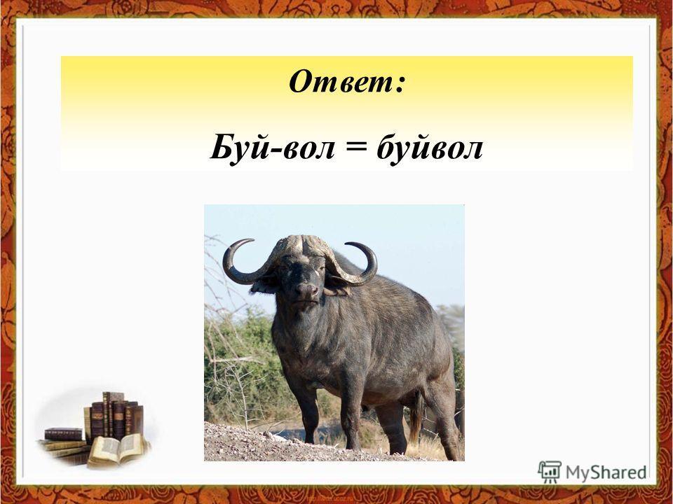 Ответ: Буй-вол = буйвол