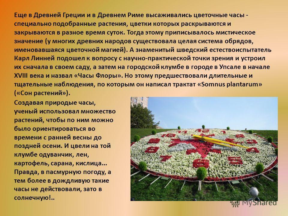 Еще в Древней Греции и в Древнем Риме высаживались цветочные часы - специально подобранные растения, цветки которых раскрываются и закрываются в разное время суток. Тогда этому приписывалось мистическое значение (у многих древних народов существовала