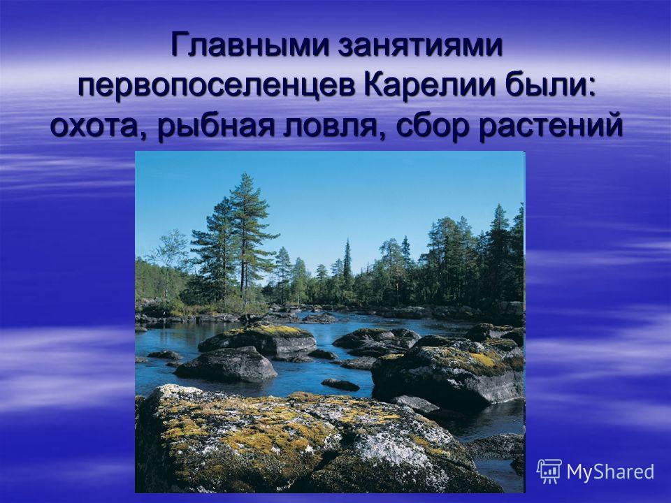 Главными занятиями первопоселенцев Карелии были: охота, рыбная ловля, сбор растений