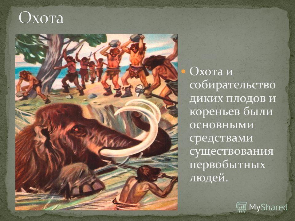 Охота и собирательство диких плодов и кореньев были основными средствами существования первобытных людей.