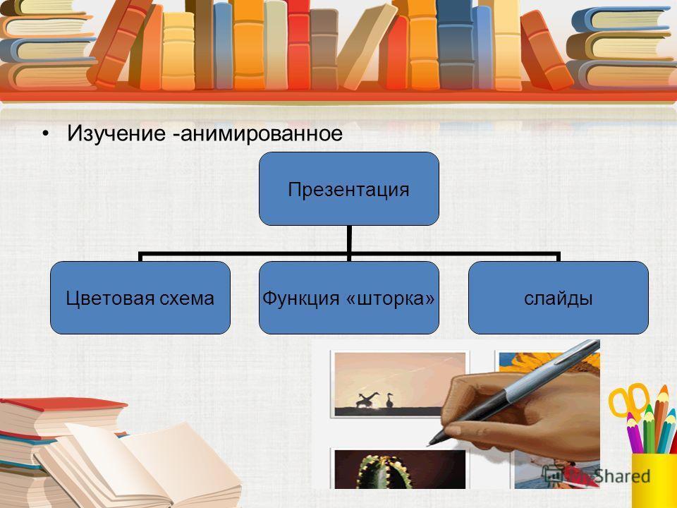 Изучение -анимированное Презентация Цветовая схема Функция «шторка» слайды