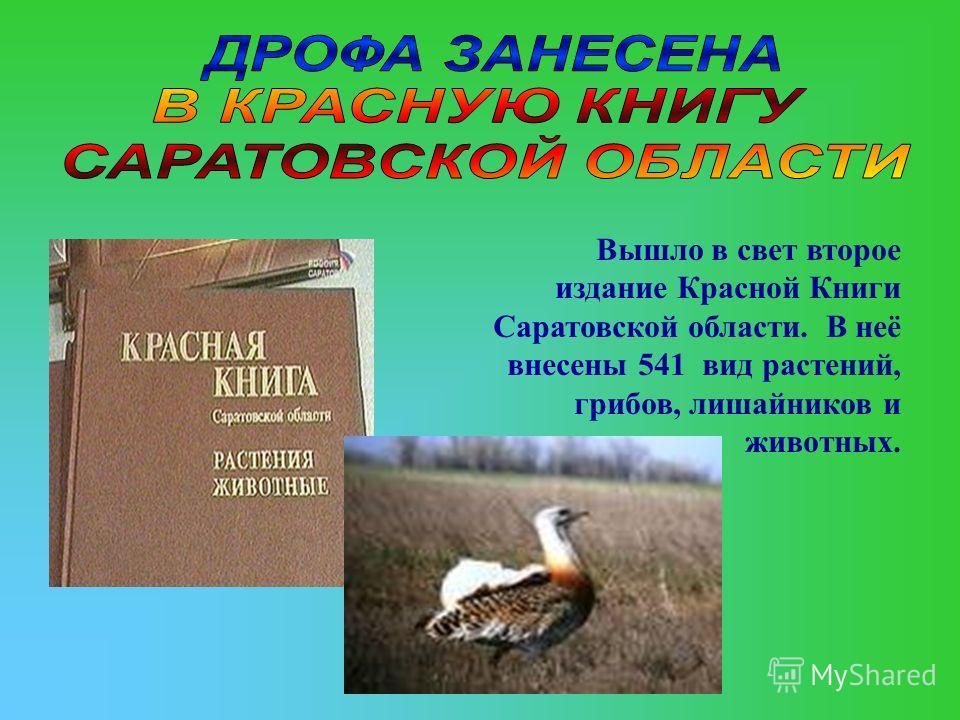 Вышло в свет второе издание Красной Книги Саратовской области. В неё внесены 541 вид растений, грибов, лишайников и животных.