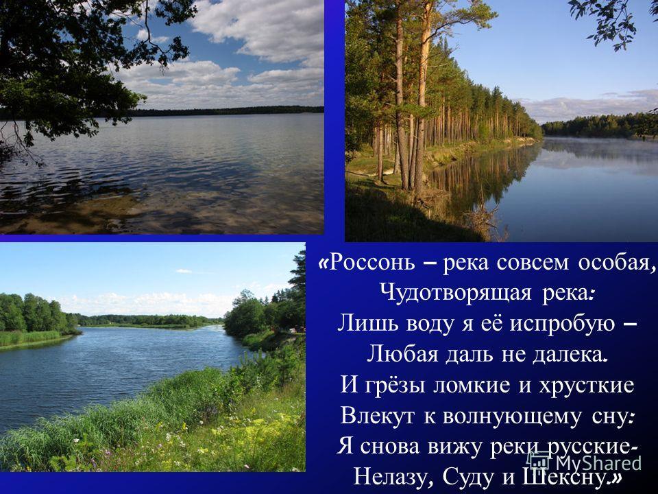 « Россонь – река совсем особая, Чудотворящая река : Лишь воду я её испробую – Любая даль не далека. И грёзы ломкие и хрусткие Влекут к волнующему сну : Я снова вижу реки русские - Нелазу, Суду и Шексну.»